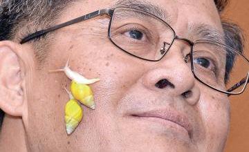 พบหอยพันธุ์ใหม่โลก | Siam Snail